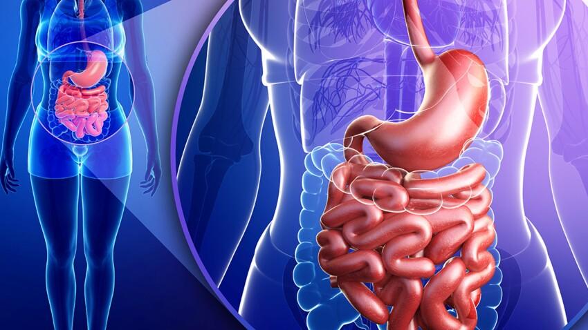 dr g coût de perte de poids apport quotidien pour perdre du gras