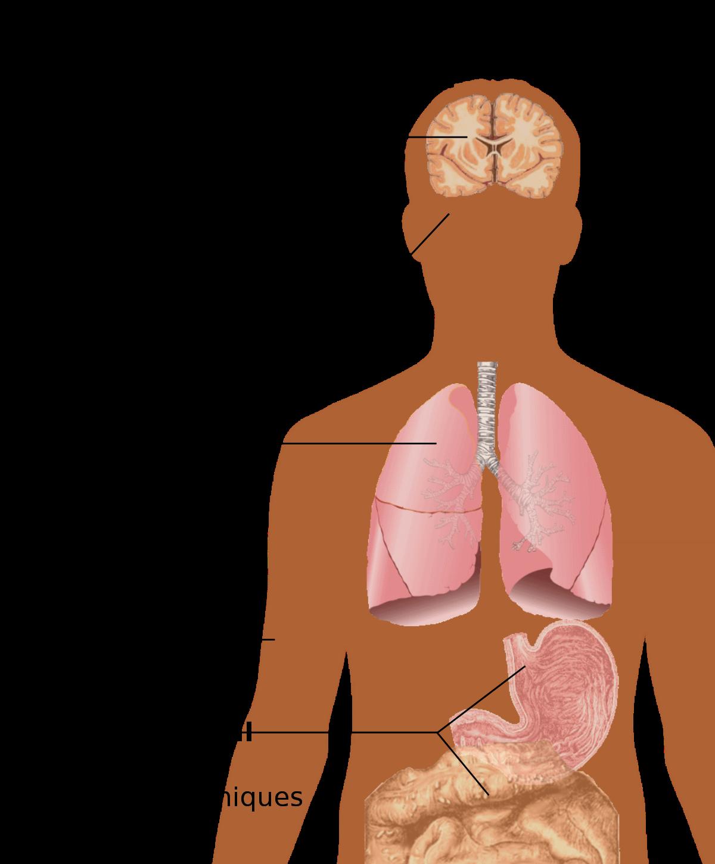 symptômes du vih et de la perte de poids