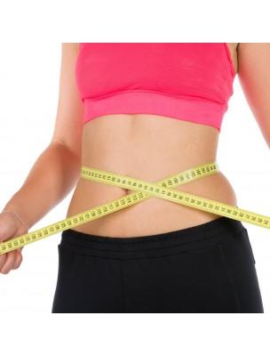 perte de laboratoire de graisse