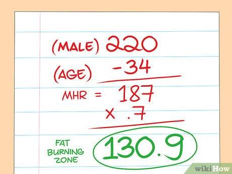 zone hr pour perdre du poids brûle les graisses dans ton ventre