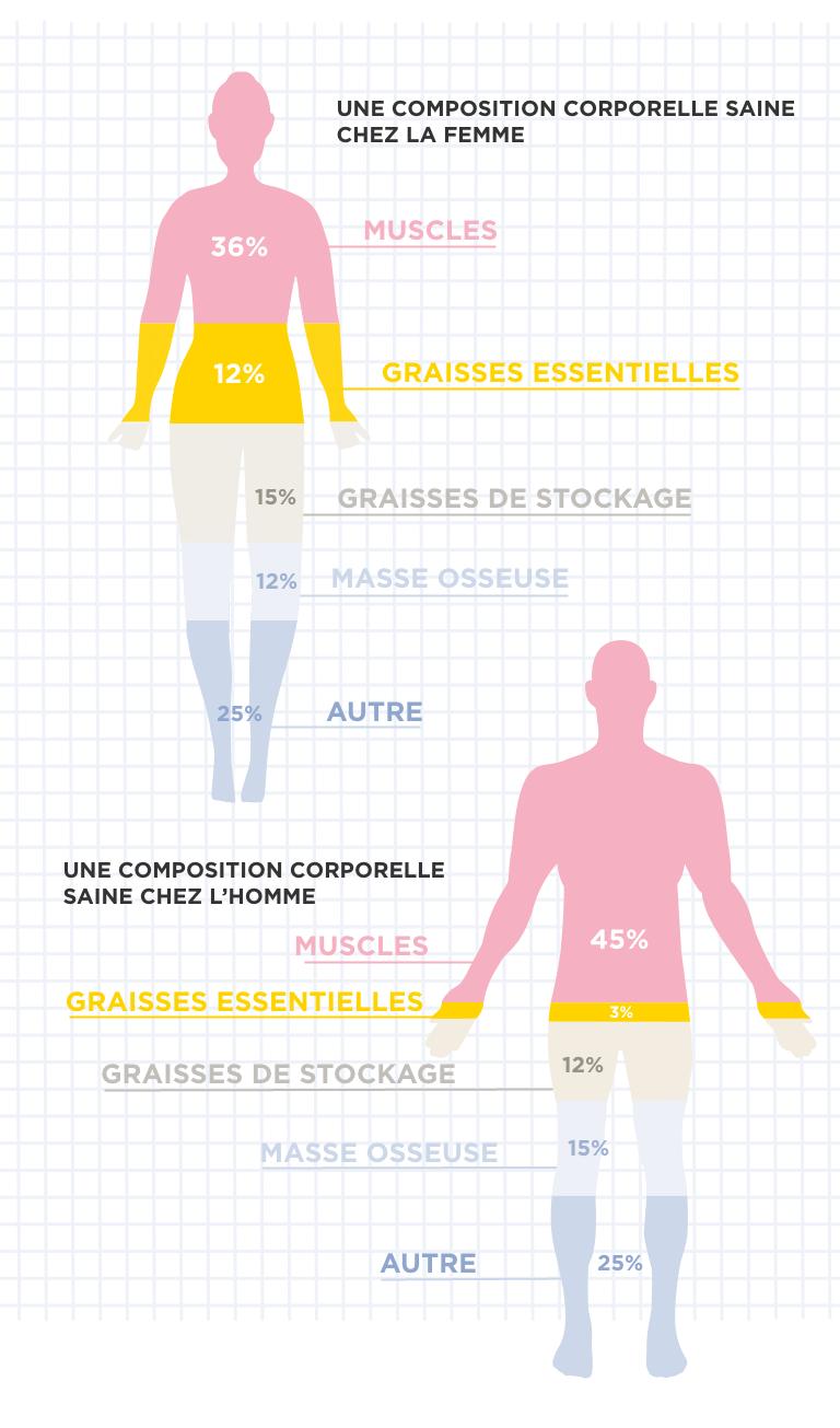 vitesse de perte de graisse corporelle combien de poids devriez-vous perdre en allaitant