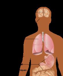 quelle cytokine provoque une perte de poids dans le vih