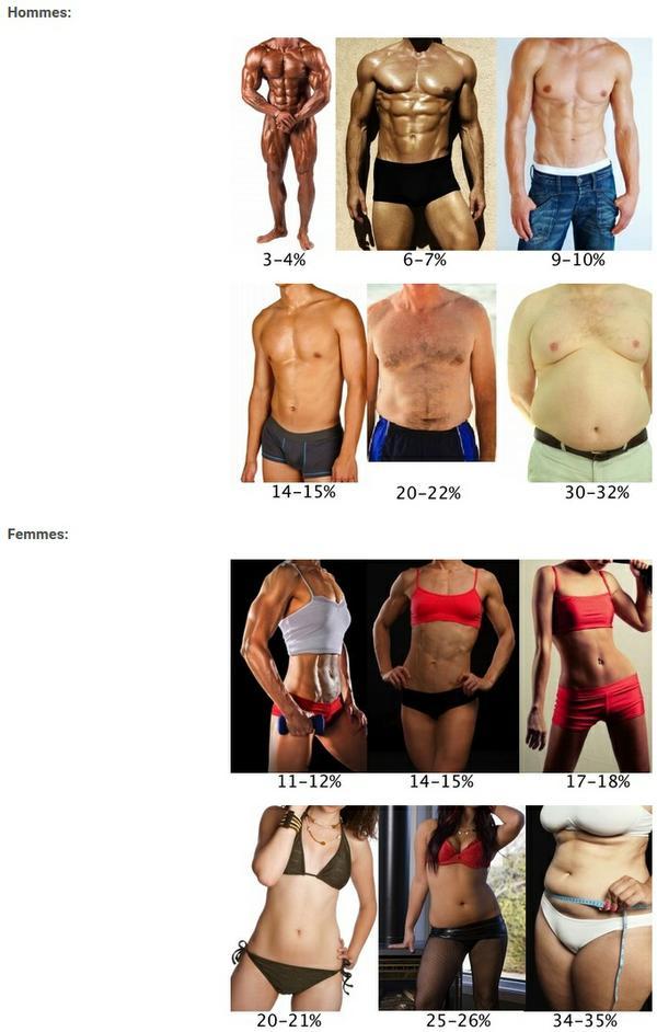 la bête du corps perd de la graisse