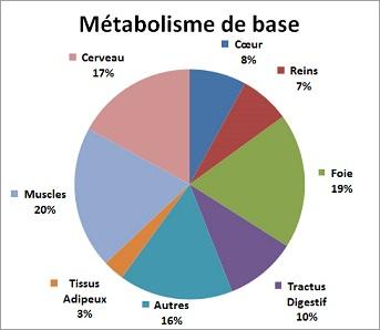 booster votre métabolisme pour perdre du poids les combinaisons aident-elles à perdre du poids