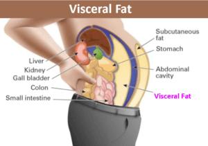 toxines de perte de graisse