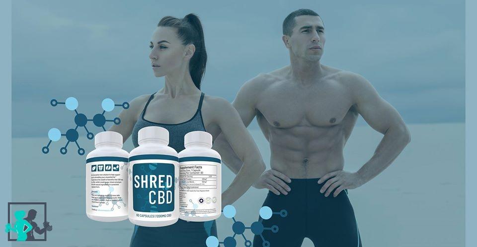 Perdre de la graisse, maigrir et transformer son corps sans perte d'énergie et de muscles