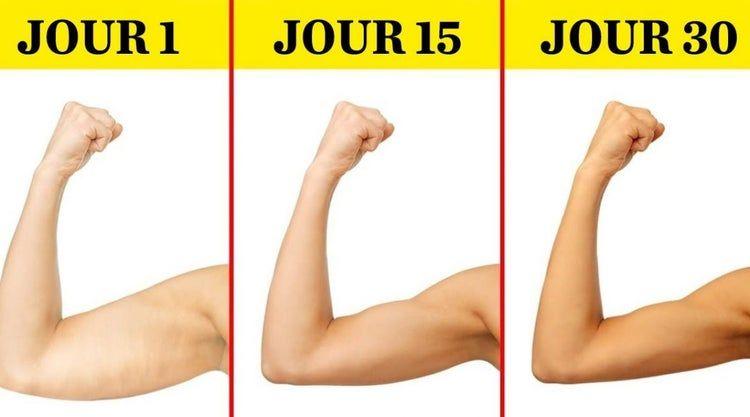 meilleur poids dhaltère pour perdre la graisse du bras