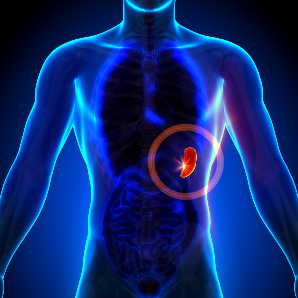 perte de poids après la fièvre typhoïde meilleur rc pour perdre du poids