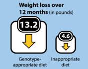 En quoi consiste le régime adn qui permet de perdre du poids rapidement ?