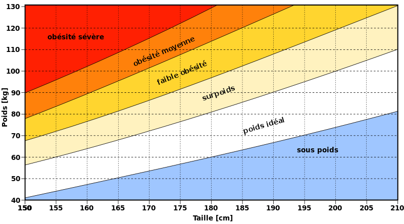 diagramme corporel pour les mesures de perte de poids perdre du poids el paso