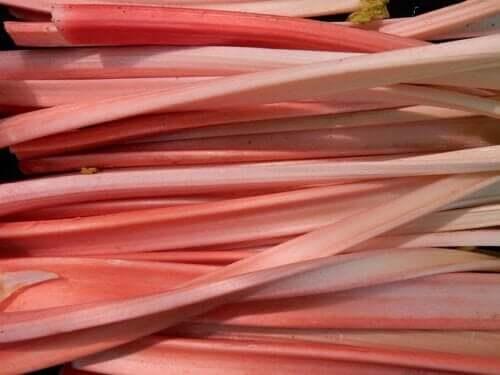 la perte de poids dextrait de rhubarbe
