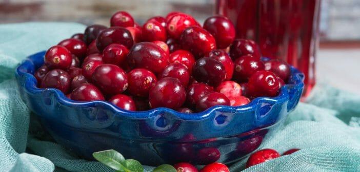 cerises acidulées pour perdre du poids agen body slim à base de plantes