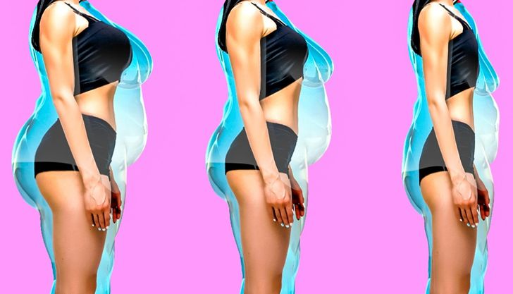 métabolisme de vitesse de perte de poids
