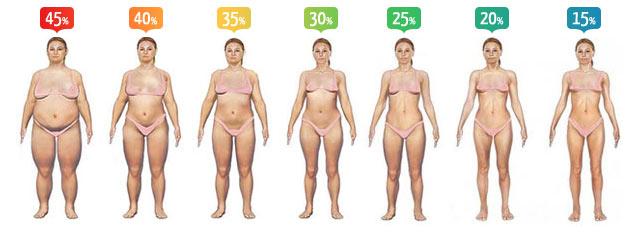 pourcentage de macro pour la perte de poids féminine